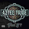 Aztec Tribe - What If Chicano Rap